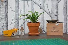 Un espacio de trabajo lleno de ideas para nuestra casa