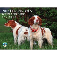 Hunting Dogs & Upland Birds Wall Calendar: Spend the year on the hunt with this 2013 wall calendar featuring a combination of hunting dogs and upland birds. This colorful calendar is printed on the highest quality paper to ensure brilliantly clear images.  $12.95  http://calendars.com/Assorted-Dogs/Hunting-Dogs-and-Upland-Birds-2013-Wall-Calendar/prod201300003332/?categoryId=cat00188=cat00188#