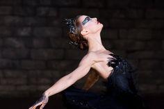 Cisne Negro - Foto