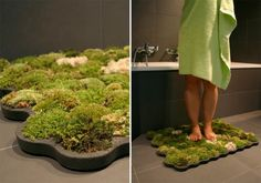 so cool!!!--Living moss bath/shower mat. That feel of nature under your feet. Capable of low natural light living and drinking all the water you wanted to keep of your floor. The perfect eco/natural addition to the bathroom!