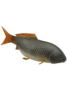 Artificial Brocarded Carp Lifelike and Realtouch PU Fish for Fish Tank or the Aquarium Restaurant Hotel Display ** Read more  at the image link.