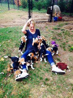 Así quiero estar un día... Rodeada de cachorritos beagle