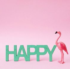 HAPPY Flamingo Craft, Flamingo Decor, Pink Flamingos, Flamingo Pictures, Flamingo Birthday, Print Fonts, Pink Bird, Illustrations, Bird Feathers