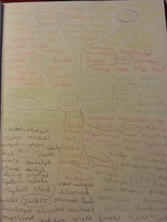 Fase 1:  Mindmap kleuren en welke emoties en gevoel er bij horen.