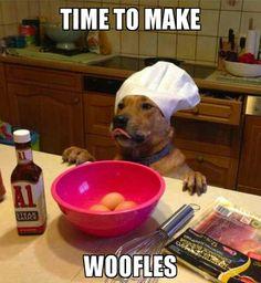 Haha, woofles!