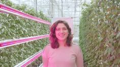 The Netherlands has become an agricultural giant by showing what the future of farming could look like.