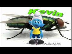 Lustiger Schlumpf - Stubenfliege Kevin ist ein A....loch ;) Fly, Zoobe, ... Animation, Flyer, Sonic The Hedgehog, Funny, Youtube, Fictional Characters, Art, Art Background, Kunst