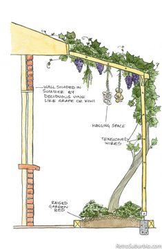 RetroSuburbia by David Holmgren Veg Garden, Edible Garden, Garden Beds, Garden Plants, Spiral Garden, Grape Trellis, Permaculture Design, Permaculture Garden, Design Jardin