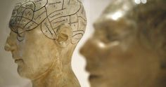 Plaster phrenological models of heads, showing different parts of the brain, are seen at an exhibition at the Wellcome Collection in London March 27, 2012.