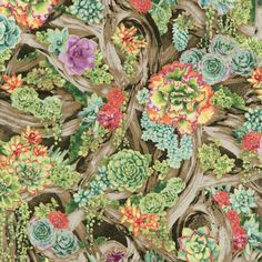 RJR Fabrics - Oasis 2883-001 PERENNIAL PARADISE-SUNRISE