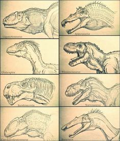 prehistoric creatures Prehistoric Carnivores by Arrancarfighter Dinosaur Sketch, Dinosaur Drawing, Dinosaur Art, Prehistoric Dinosaurs, Prehistoric Creatures, Creature Concept Art, Creature Design, Creature Drawings, Animal Drawings