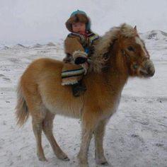 riding a Yakut