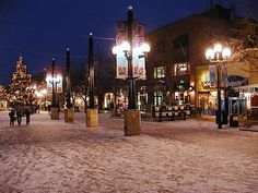 Critter Sitter's Blog: November 2010 - Pearl Street Mall on a Winter's Night