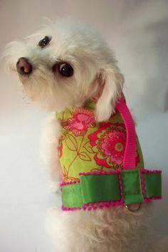 RockinDogs Lime Pink & Red Mod Floral Dog or Cat Harness