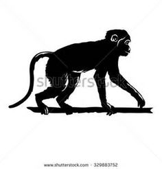 silhouette clip art marmoset - Saferbrowser Yahoo Image Search Results