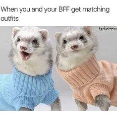 TAG YOUR BFFS