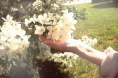 day and moonlight: Photo Garden City Beach, Tiny White Flowers, Polaroid Frame, Growing Strong, Summertime Sadness, Open Your Eyes, Mountain Dew, Summer Breeze, Autumn Trees