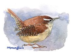 ACEO Limited Edition 5/25 - Winter wren, Bird art print of an original watercolor miniature painting by Anna Lee, Bird in winter