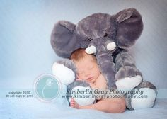 Kimberlin Gray Photography - Newborn - One of my Favorites!!