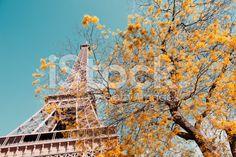 Torre Eiffel - fotografia de stock royalty-free