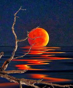 se me cayo la luna y era anaranjada !!!