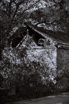 BWSTOCK.PHOTOGRAPHY  //  #decaying #house Black White Photos, Black And White, Free Black, House Styles, Photography, Home Decor, Photograph, Decoration Home, Black N White