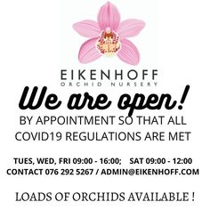Cymbidium Fever has started! Loads of beautiful plants in bud available.  #orchids #eikenhoff #eikenhofforchidnursery #orchidaddict #orchidaffair #orchidcollector #orchidfever #stanford #locallygrown #greenfingers #onlineshopping #cape #watchthisspace #orchidsonthemove #orchidgrower #iwantthemall #whalecoastsa #bestkeptsecret #flowerslovers #floral #orchid #homedecor #orchiddelivery #cymbidiumfever