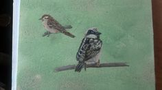 Bird Duo 8X10 Acrylic $100.00 Framed with Certificate 201450