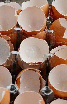 A tojáshéj tele van kalciummal, és ez fontos tápanyag a növények számára. Okos dolog komposztálni, de a lebomlás sokáig tart. Most egy olya...
