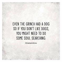 Dog Quotes, Animal Quotes, Life Quotes, Funny Quotes, I Love Dogs, Puppy Love, Susa, Soul Searching, Crazy Dog