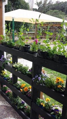 30 Most Inspiring DIY Pallet Garden Fence Ideas To Improve Your Outdoor Space is part of Pallets garden - Check out some inspiring pallet garden fence ideas which you can make easily at home! Tyeh won't cost you a lot but enough t enhance your backyard! Outdoor Projects, Garden Projects, Diy Projects, Outdoor Decor, Diy Fence, Fence Ideas, Pallet Ideas, Pallet Garden Ideas Diy, Wood Pallet Fence