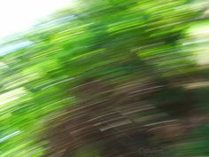 Check out Green Motion Blur by RusticApplePhotos on Creative Market