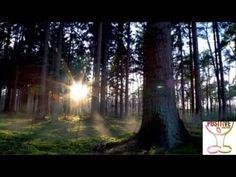 E4 10 Minute Guided Meditation  The Power Of Karma   Positive Energy