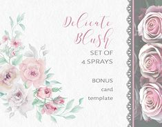 Blush And Grey, Pink Grey, Grey Roses, All Paper, Sprays, Floral Watercolor, Stationery, Delicate, Behance