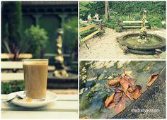 En nuestra búsqueda del edén en mitad del infierno (léase: Madrid) hemos dado con este tesoro: el Café del Jardín, un oasis en el patio del Museo del Romanticismo, palacete del siglo XVIII convertido en remanso de paz a dos pasos de la calle Fuencarral.  Abre pronto por la mañana y es un lugar perfecto para un desayuno festivo (café con tostada por 2,50€, o bocadillos, croissants y yogur con muesli) o un café a media tarde acompañado de una tarta casera. También se puede comer a mediodía…