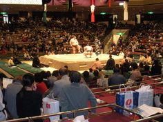 seats for sumo match tokyo japan