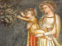 Allegretto Nuzi - Madonna col bambino, dettaglio - affresco - Fabriano, Chiesa di San Domenico, Sala Capitolare