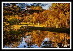 Fall Colors - Reflections