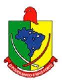 Acesse agora Câmara Municipal de Sarandi - RS realiza Concurso Público  Acesse Mais Notícias e Novidades Sobre Concursos Públicos em Estudo para Concursos