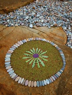 stones and dandelion
