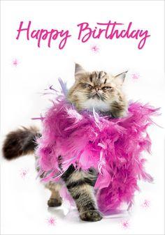 first birthday outfits Happy Birthday Animals, Free Happy Birthday Cards, Happy Birthday Celebration, Happy Birthday Flower, Happy Birthday Meme, Happy Birthday Pictures, Happy Birthday Sister, Happy Birthday Greetings, Birthday Love