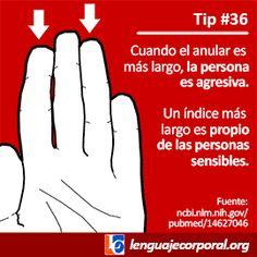 tip36ps