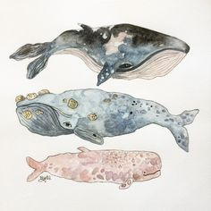 Original Watercolor Stacked Whales // 12 in. x 12 by TheDeerFox