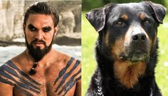 """Khal Drogo 