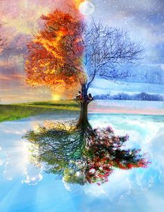 A wonderful photo of the seasons of life. Both are beautiful.