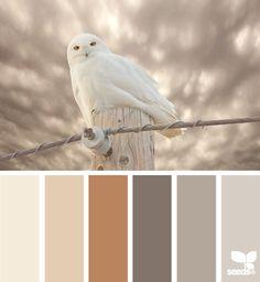 Should link to Design Seeds website for loads of color ideas owl tones Colour Pallette, Colour Schemes, Color Combos, Color Patterns, Grey Palette, Room Colors, House Colors, Paint Colors, Colours