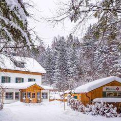 Waldruhe - Bett, Frühstück & ein Lächeln Bed And Breakfast, Outdoor, Woodland Forest, Bed, Outdoors, Outdoor Games, The Great Outdoors