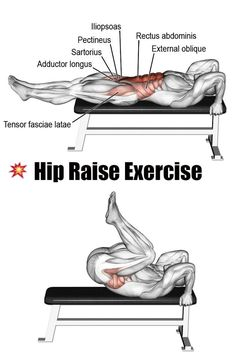 ✅HIP RAISE EXERCISE Whether you're into bodybuilding, power lifting, strength training or just getting started, these workouts and tips will help you reach your goals. Fitness Workouts, Abs Workout Routines, Weight Training Workouts, Gym Workout Tips, At Home Workouts, Tummy Workout, Exercise Workouts, Training Exercises, Workout Challenge