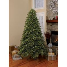 Martha Stewart Living 15 Ft Pre Lit Led Blue Noble Spruce