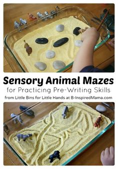 Fine Motor Development with Sensory Animal Maze Play at B-Inspired Mama. Cute idea for 'ers! Motor Skills Activities, Sensory Activities, Fine Motor Skills, Preschool Activities, Sensory Tubs, Sensory Boxes, Sensory Play, Pre Writing, Writing Skills